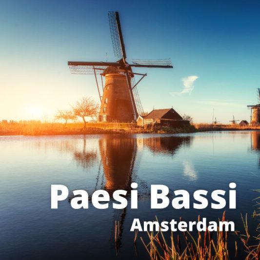 Baesi Bassi
